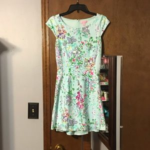 Lilly Pulitzer southern charm Brielle dress small